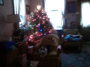 Christmas 2014 011
